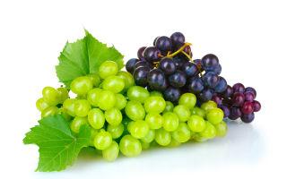 Можно ли есть виноград при подагре